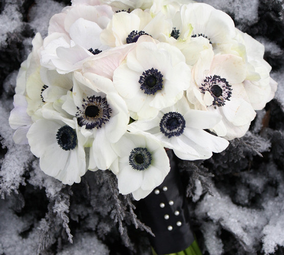 Bella Fiori Washington State, bridal bouquet of Panda anemones, white with black center anemones