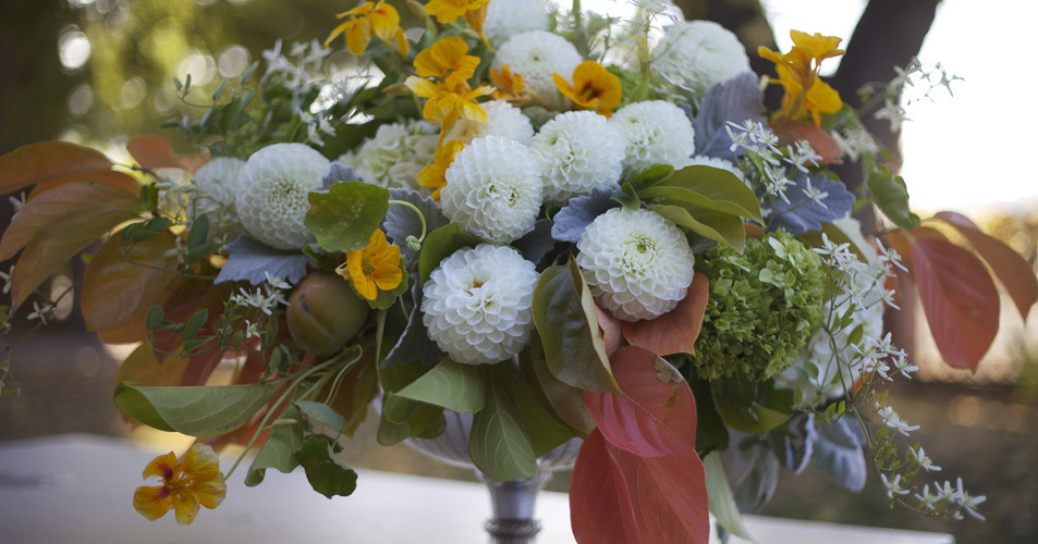 Bella Fiori Wedding Florist in PNW, urn filled with fall leaves, nasturtium and white dahlias with persimmons