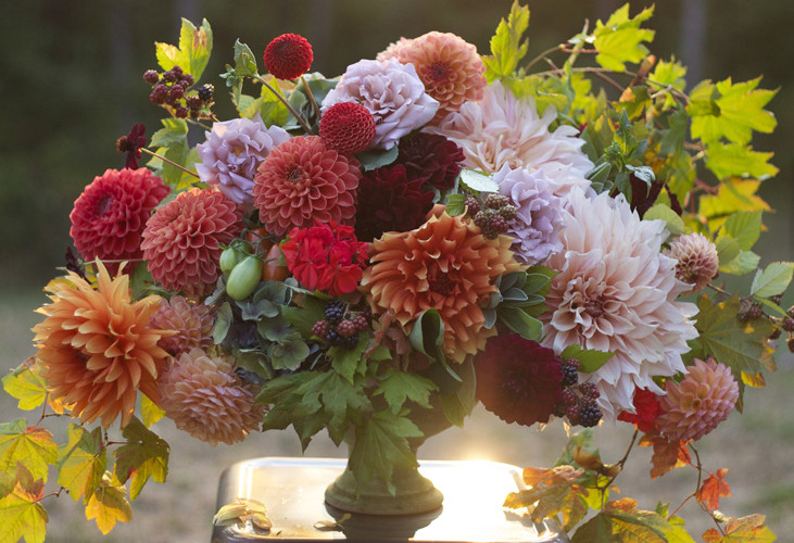 Bella Fiori, Washington State, Seattle Wedding Flowers - flower compote arrangement with fall colored dahlias, cafe au lait dahlias, fall leaves