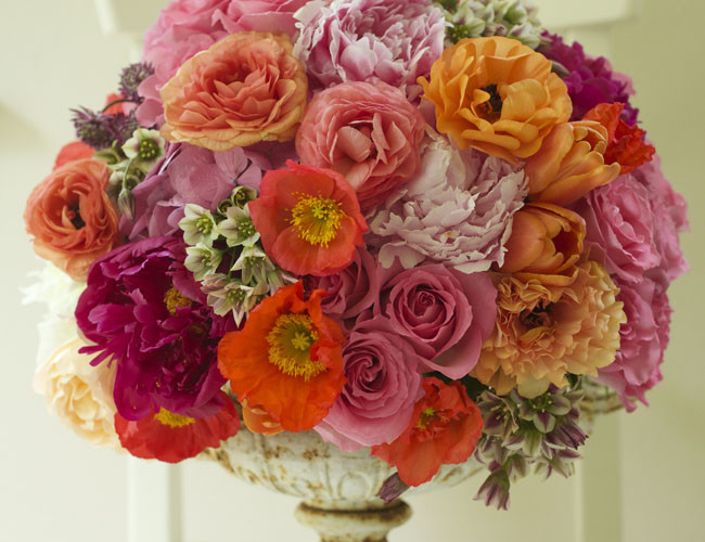 Bella Fiori, Washington State Floral Designer - Coral colored flowers in an urn